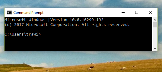 """ver"" reports Microsoft Windows [Version 10.0.16299.192]"